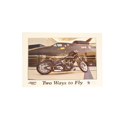 TWO WAYS TO FLY POSTER