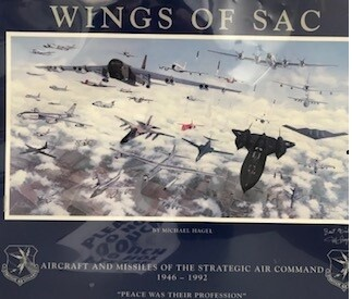 WINGS OF SAC POSTER