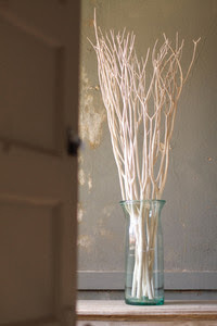 Bleached Willow Branches