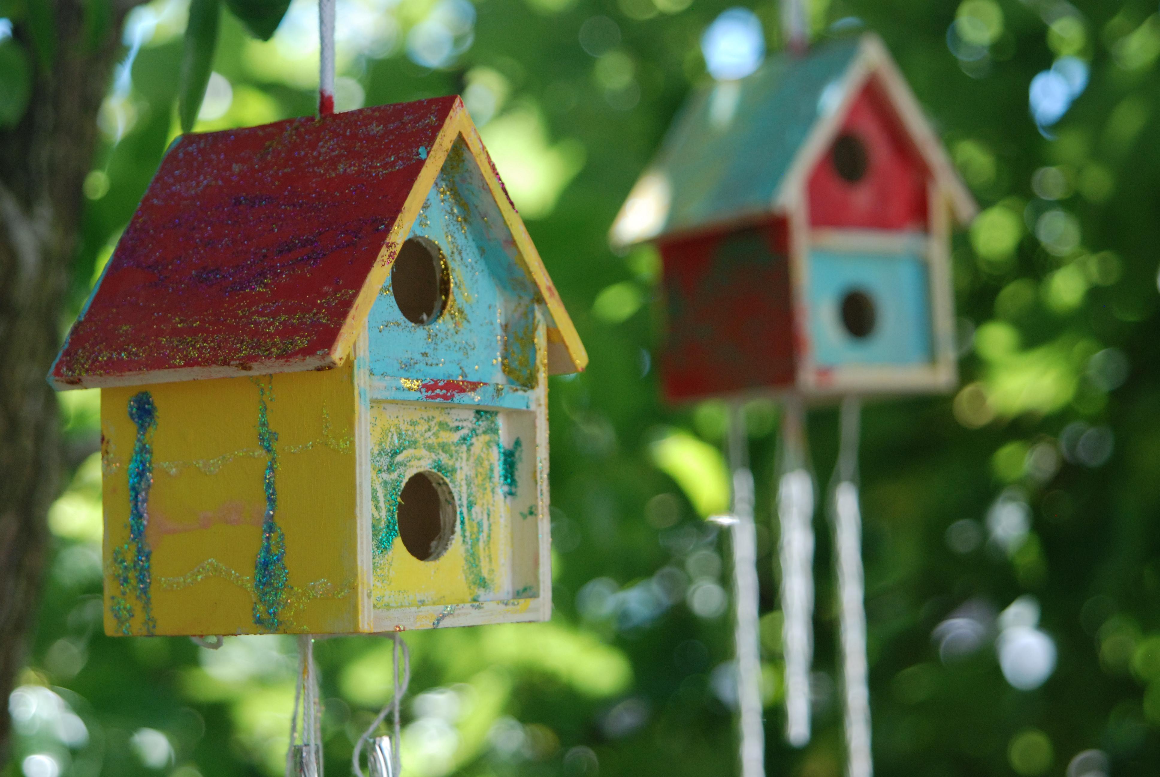 Birdhouse 00017