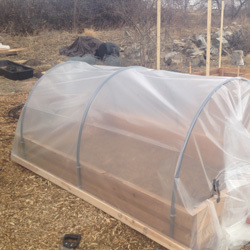 * Cold Frame (+$80.00) Extends the growing season four weeks in the spring and eight weeks in the fall. Cold frames are great for extending the season for cold crops (leafy green and root crops), allowing you to harvest vegetables well into December!