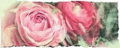 Karte Rosa Rose