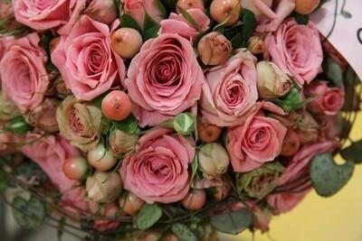Polyantha Rosen (verzweigt) rosa, kleinblumig