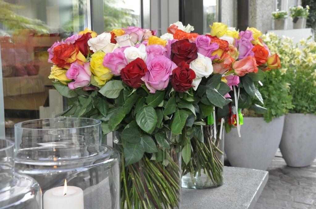 Rosen bunt gemischt