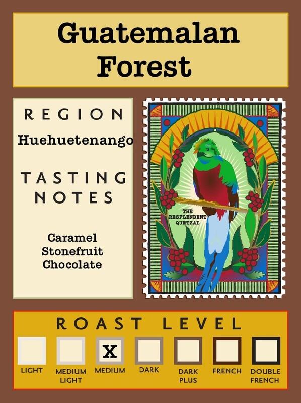 12oz Organic Guatemalan Forest