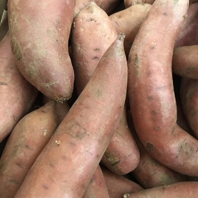 Sweet Potato - SF (1lb)