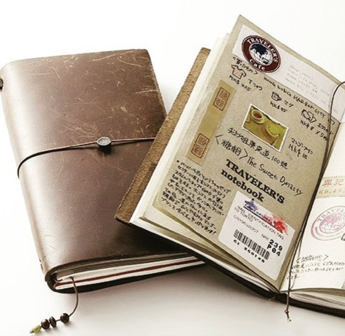 Traveler's Notebook, Regular Size