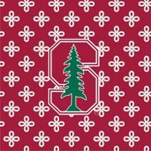 VB Collegiate Blanket Stanford