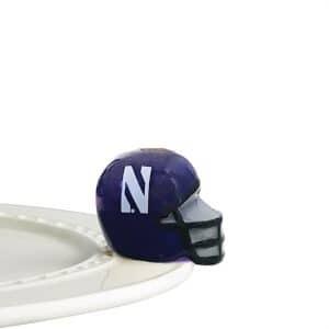 NF Helmet Northwestern U A304