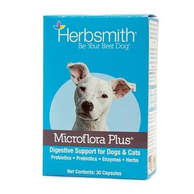 Microflora Plus 30 Count