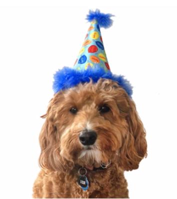 Huxley & Kent Party Time Hat- Blue
