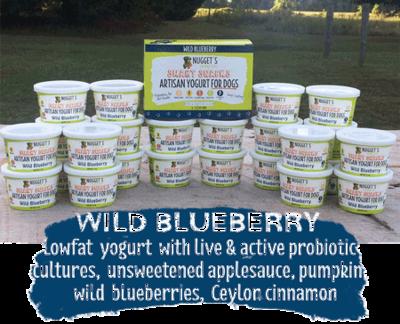 Healthy Nuggets Yogurt- Blueberry