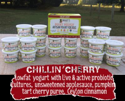 Healthy Nuggets Yogurt- Cherry