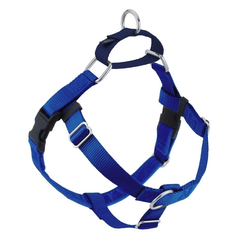 2 Hounds Harness Only Large Royal Blue