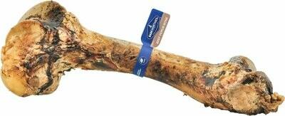 Barkworthies Beef Femur Bone Huge