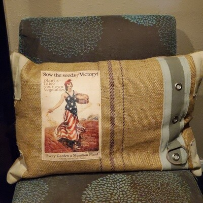 Z seeds of Victory Canvas Pillow