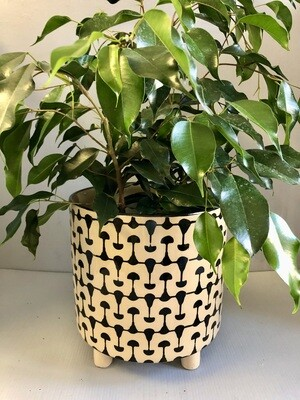 B&W Footed Stoneware Planter 8