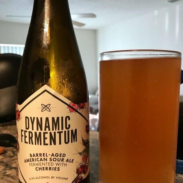 Ology Brewing Co. Dynamic Fermentum - 16.9 OUNCE BOTTLE