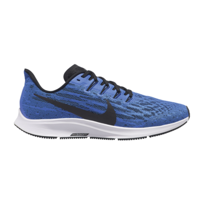 Nike Pegasus 36 (Men)