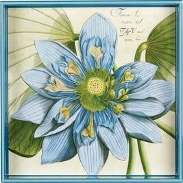 RF Blue Lotus Tray