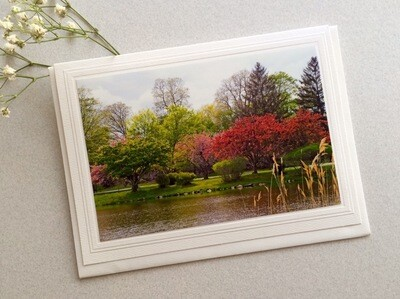 JD Bruce Park in the Spring Note Card