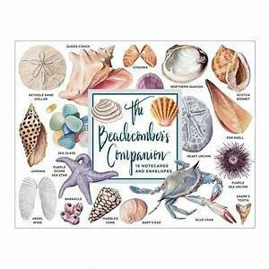 CB Beachcomber Boxed Note Cards