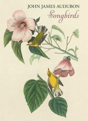 PO Boxed Cards Songbird