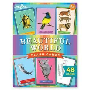 EB Beautiful World Flash Cards