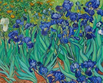PO Van Gogh Keepsake Boxed Notecards
