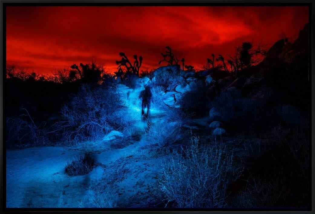 """Ghost Walker"" by John Van Vliet"