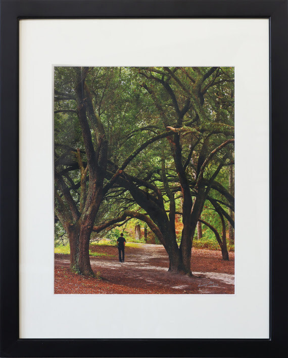 """Under Beeches"" by Nancy Sandy"