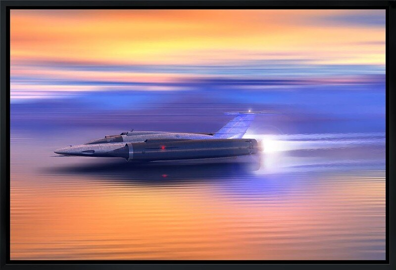 """Skimmer H2O WSR"" by Richard Taylor"