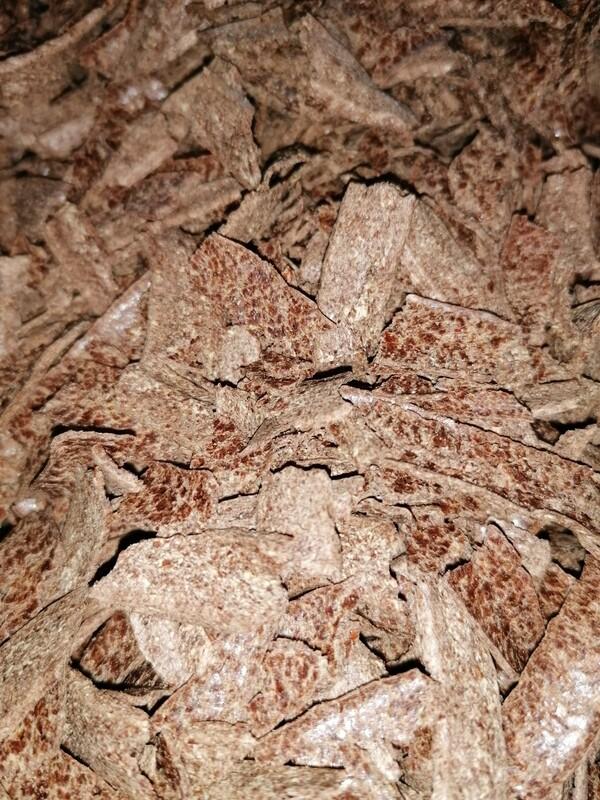 Leinsamen - Biopower Plus - Protein