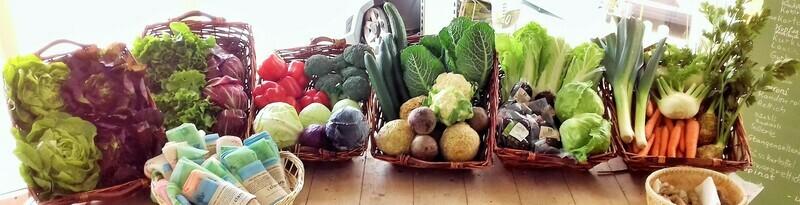 Bio-Gemüse-Kiste