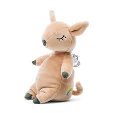 Minikin Pig