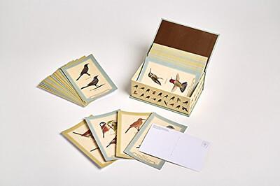 Sibley Backyard Birding Boxed Postcards