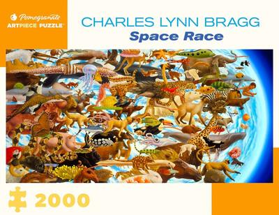 Space Race 2000 pc. Puzzle