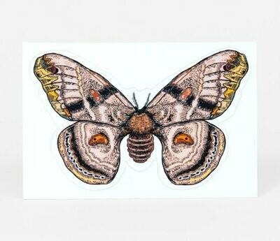 Slowloris Moth Decal