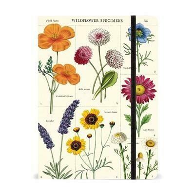 Wildflowers Notebook 6