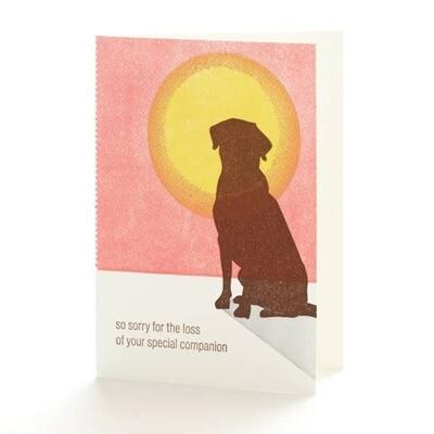Companion Loss Card
