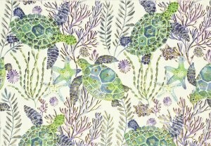Sea Turtles Boxed Cards (14)