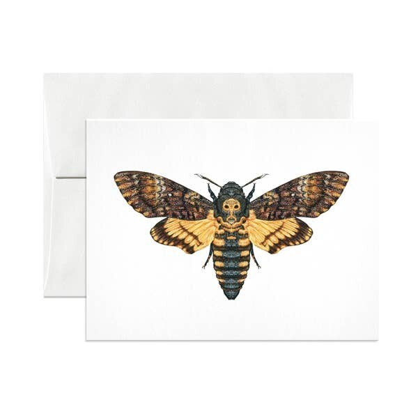 Death's Head Hawkmoth Card