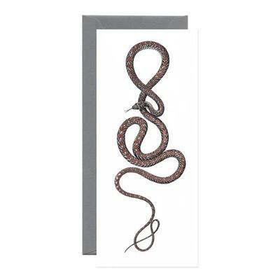 Flying Snake Card