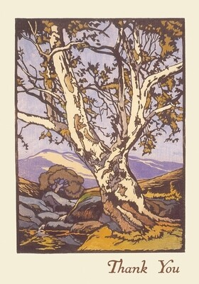 William S. Rice: Western Sycamore Boxed Thank You Notecards