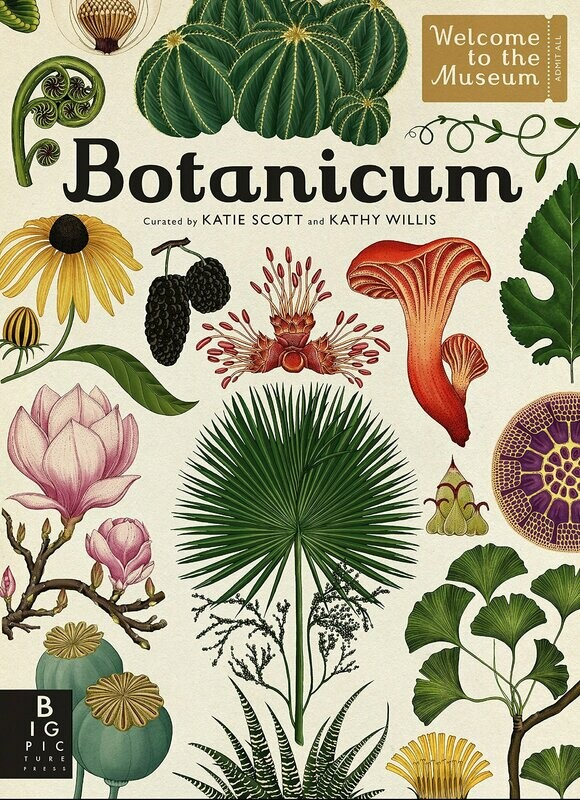 Botanicum by Katie Scott & Kathy Willis