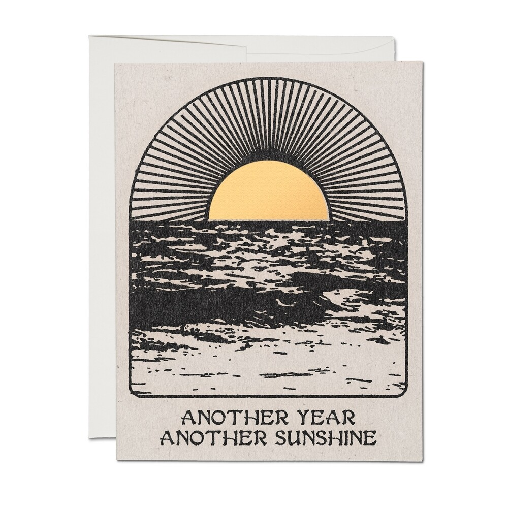 Another Year Another Sunshine