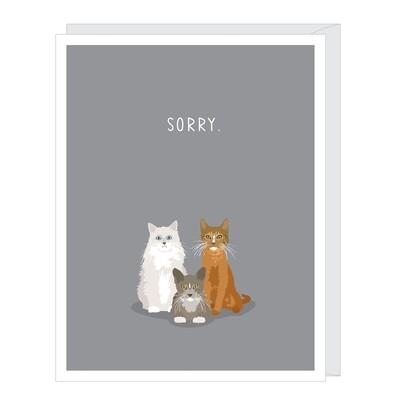 Sorry Cats Sympathy Card