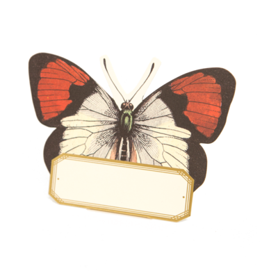 Jumbo Butterfly Place Cards