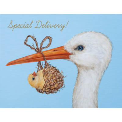 """""""Special Delivery"""" Baby Stork Card"""