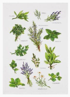 Field Guide Herbs Kitchen Towel